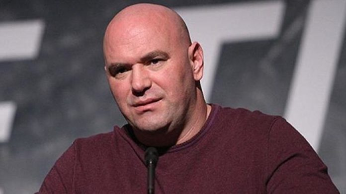 dana white clashes with reporter over ufc 229 promotion mma news