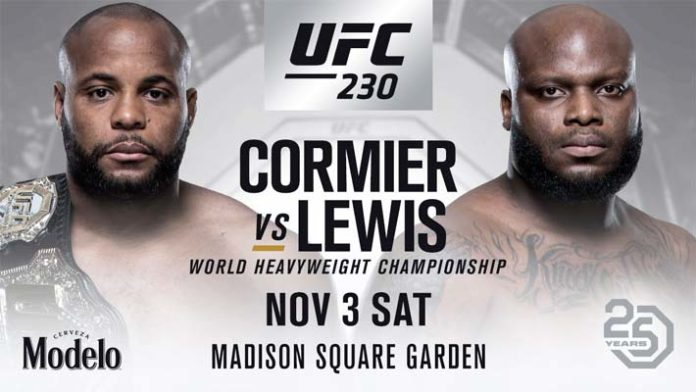 Image result for ufc 230 poster