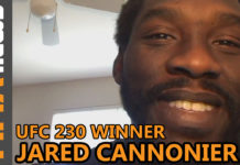 Jared Cannonier UFC 230